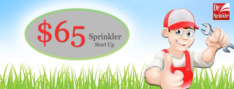 start-up sprinkler system